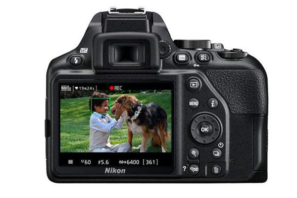 صفحه نمایش NIKON D3500