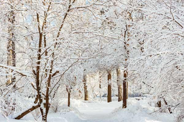 اسکپوژر درست در عکاسی زمستانی