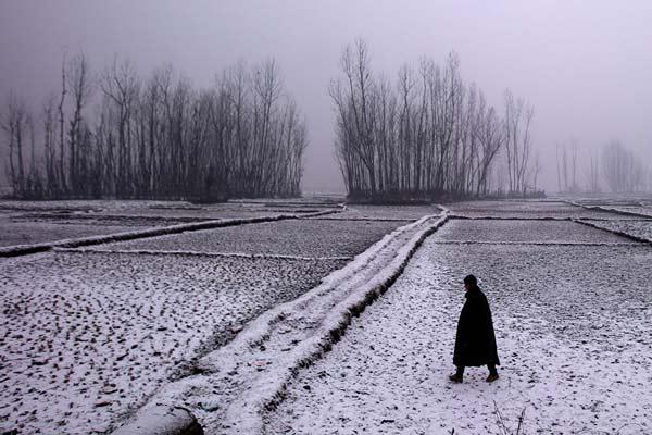 القای احساسات در عکاسی زمستانی