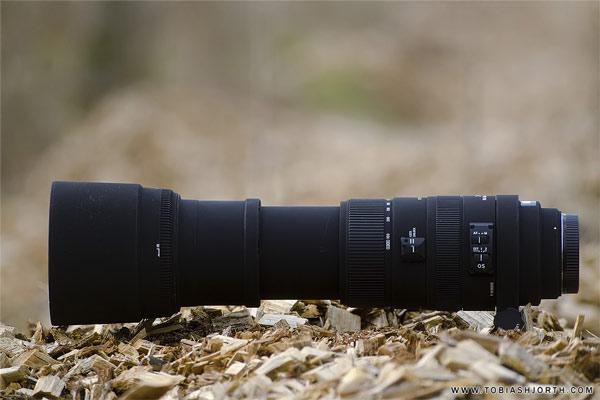 لنز دوربین سیگما برای اسپرت گرافی