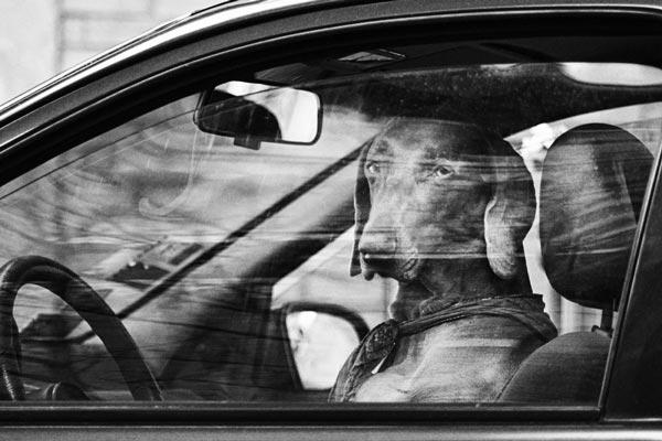 نکات و تکنیک های مهم عکاسی خیابانی