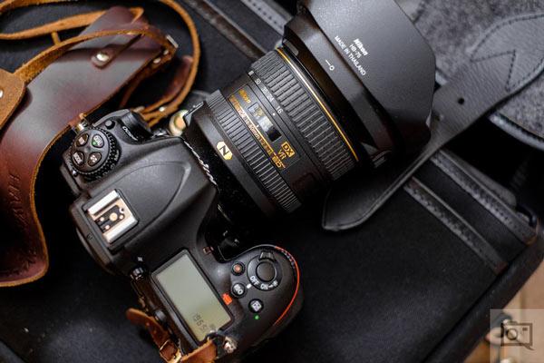Nikon D500 در عکاسی حیات وحش