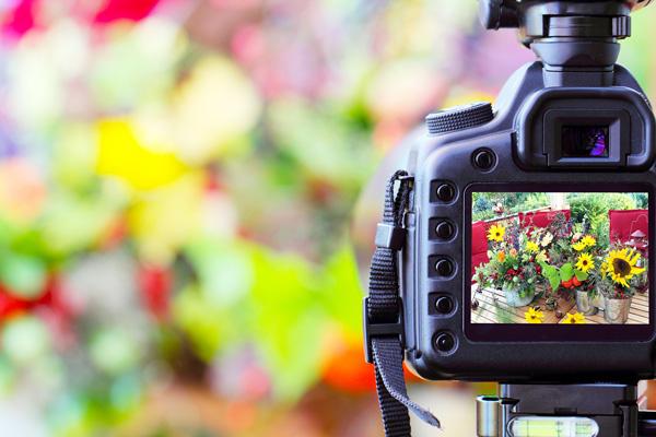 مقایسه ی فوکوس کردن دوربین با چشم انسان