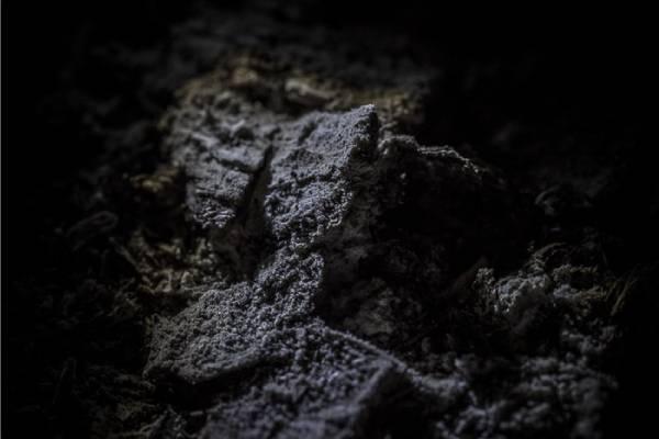 عکاسی از خاکستر با لنز ماکرو