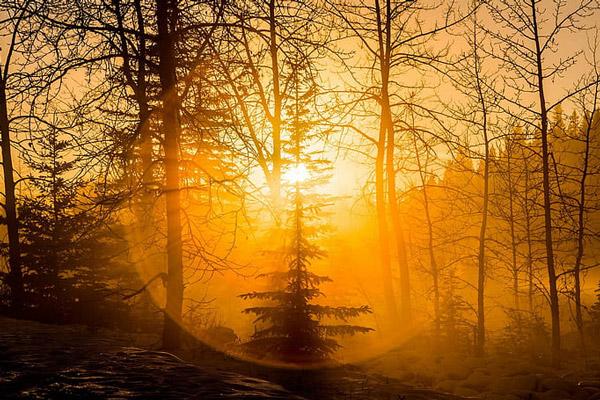 تاکید بر نور