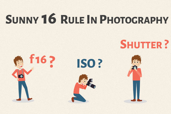 همه چیز در مورد قانون 16 آفتابی