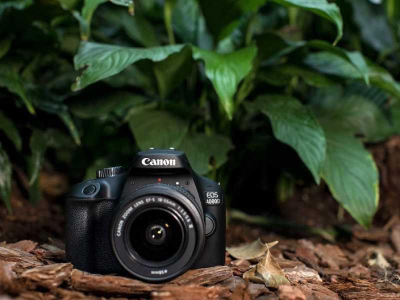 ویژگی دوربین عکاسی کانن EOS 4000D